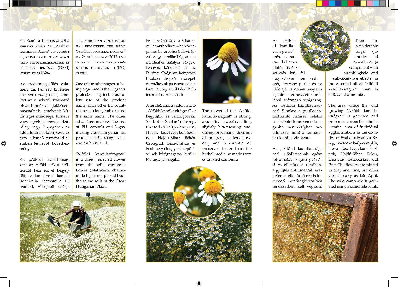 szikaranya_nyomda_Page_2